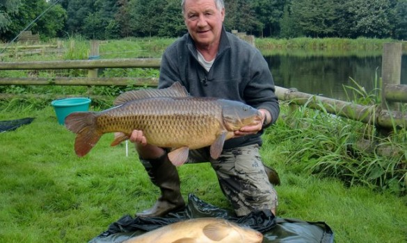 Catch carp on luncheon meat