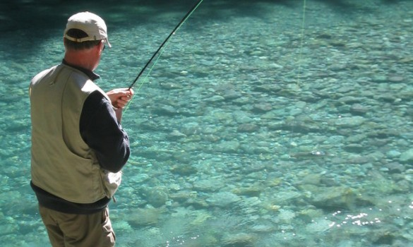 New Zealand record brown trout – is it me?