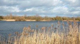 Earith Lakes, UK in winter