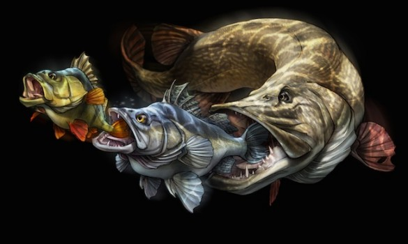 Fish Art by Tommy Kinnerup
