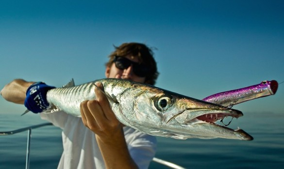 Fishing in the Canary Islands