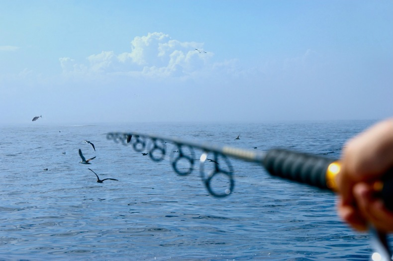 Fishing rod brands manufacturers drowning worms for Best fishing pole brands