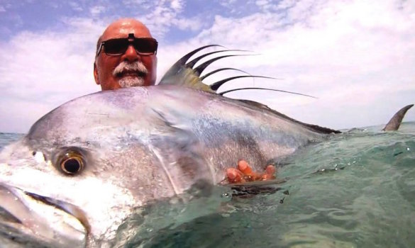 VIDEO: The best rooster fish videos all in one place