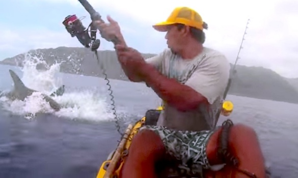If he knew what was lurking, would he have dared fish from a kayak at all?