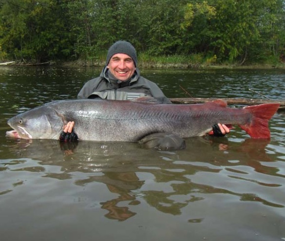 Massive taimen completely unbelievable drowning worms for Fly fishing mongolia